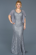 Robe Grande Taille Longue Gris ABU474